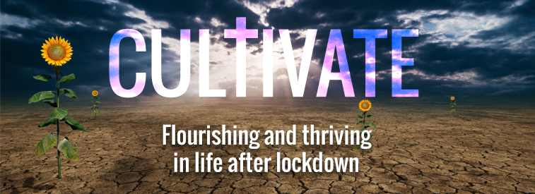 Cultivate Header